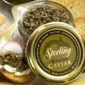 Growing Caviar The Sustainable Way, Finally!!